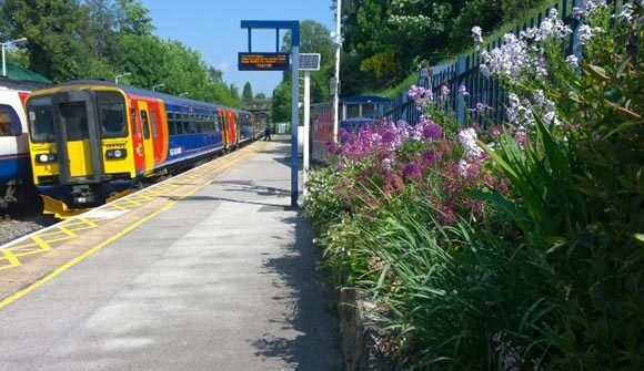 Exciting News For Transition Belper's Station Gardening Volunteers