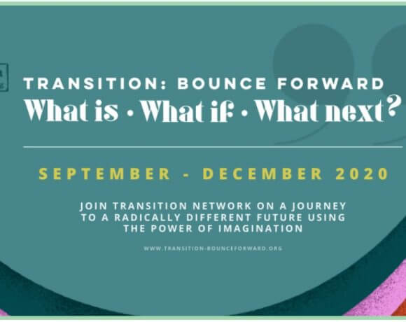 New Transition Network Online Sessions Available Now